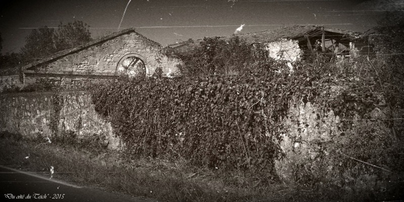 blog-pa011607-ruine-saint-louis-de-montferrand-nb-pa07.jpg