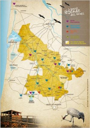 Carte grues cendrées Landes de Gascogne