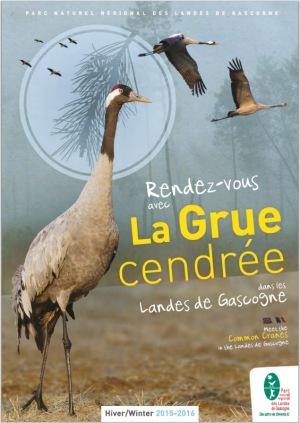 RDV avec la grue cendrée Landes de Gascogne - 2015-2016