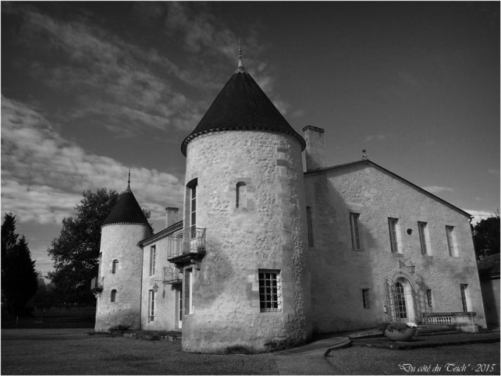 blog-pb062229-château-bétailhe-artigues-nb.jpg