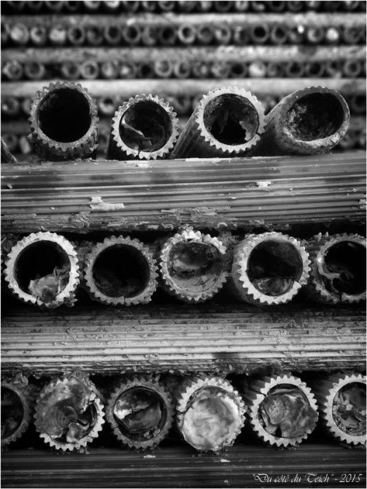blog-pb282538-collecteurs-tubes-nb.jpg