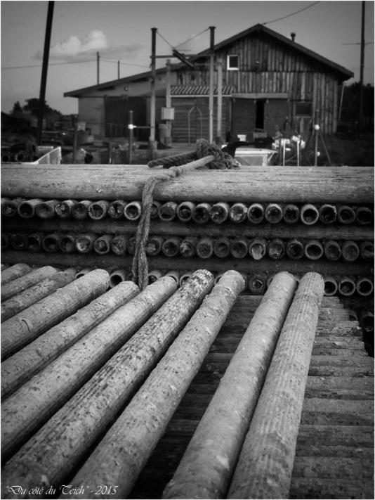 blog-pb282541-tubes-collecteurs-et-cabane-ostreicole-nb.jpg