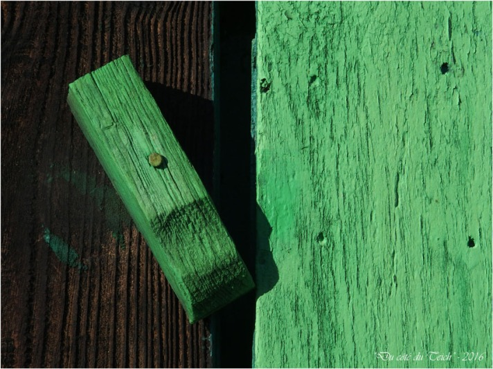 blog-p1013455-volet-vert-cabane-gujan.jpg