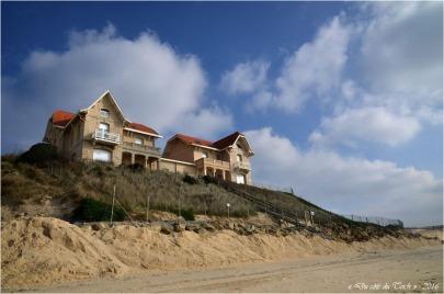BLOG-DSC_39369-maisons jumelles Biscarrosse