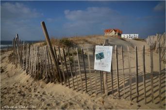 BLOG-DSC_39397-maisons jumelles et grand hôtel de la plage Biscarrosse