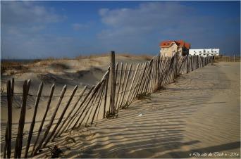 BLOG-DSC_39398-maisons jumelles et grand hôtel de la plage Biscarrosse