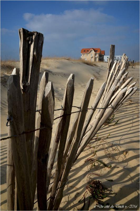 BLOG-DSC_39399-maisons jumelles et grand hôtel de la plage Biscarrosse