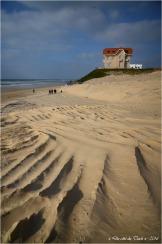 BLOG-DSC_39401-maisons jumelles et grand hôtel de la plage Biscarrosse