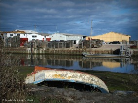 BLOG-P2043706-port du Rocher