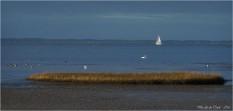 BLOG-P2043761-rivages port du Rocher