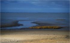BLOG-P2043772-rivages port du Rocher