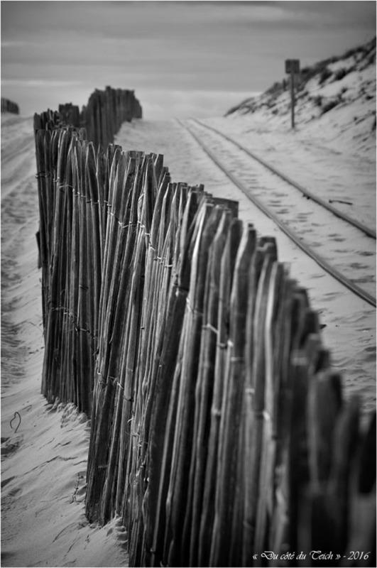 BLOG-DSC_39433-rail dunes Cap-Ferret N&B