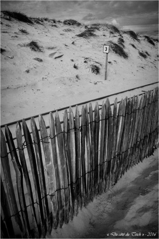BLOG-DSC_39436-rail dunes Cap-Ferret N&B