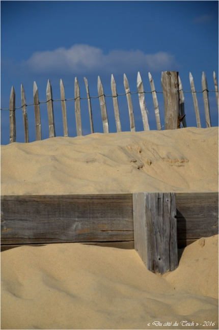 BLOG-DSC_39604-dunes Lacanau