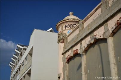 BLOG-DSC_39627-immeuble et villa Lacanau