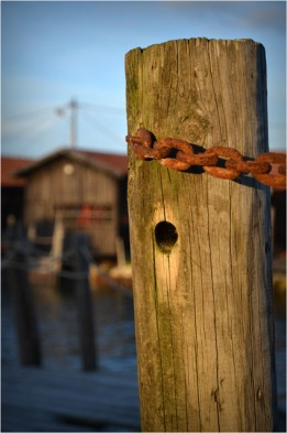 BLOG-DSC_02873-piquet et chaîne port du Canal