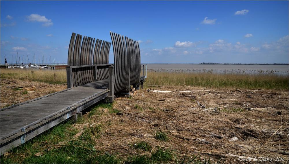 BLOG-DSC_39773-rivages Pauillac estuaire et île Patiras