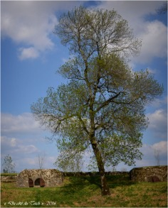 Poterne et bastion de la Gironde