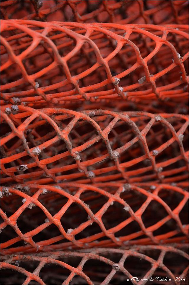 BLOG-DSC_40109-poches à huîtres