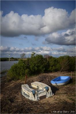 BLOG-DSC_40307-barques Leyre le Teich