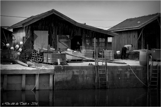 BLOG-P4214383-cabane port du Canal N&B1