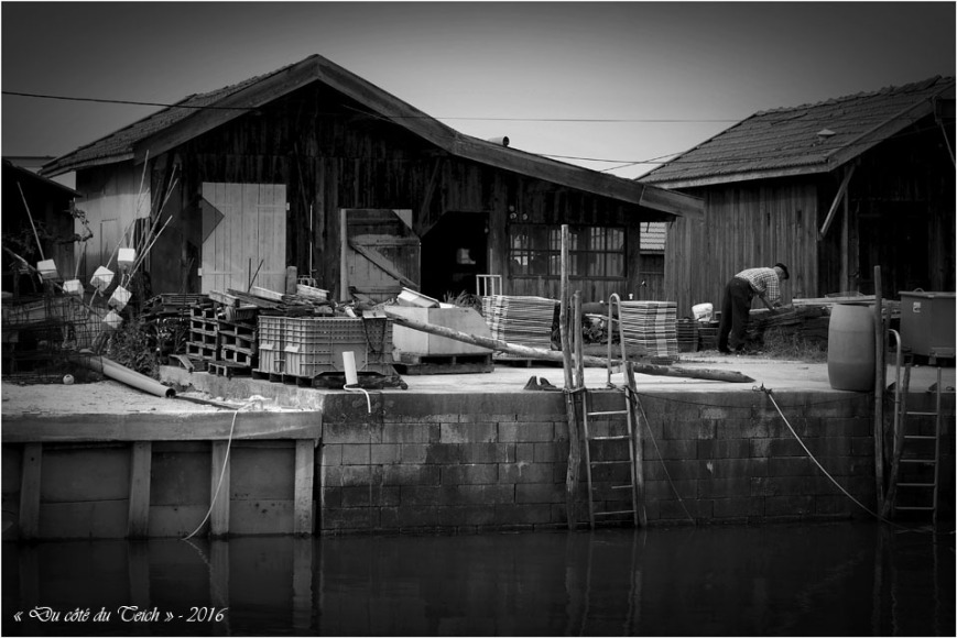 BLOG-P4214383-cabane port du Canal N&B2