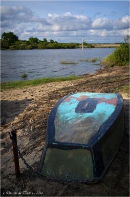 BLOG-DSC_40310-barque Leyre le Teich