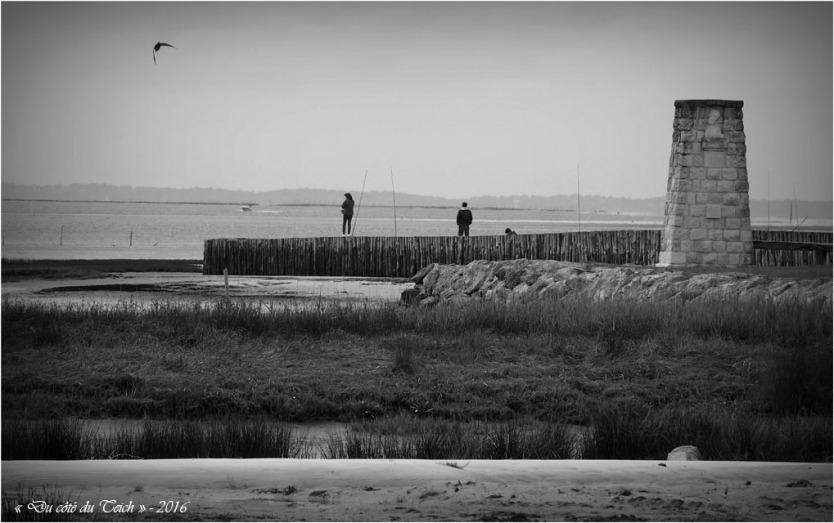 BLOG-P4224385-jetée et rivages Audenge N&B