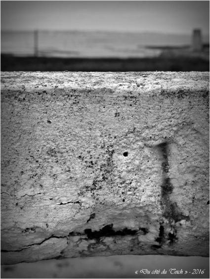 BLOG-P4224389-jetée et rivages Audenge N&B