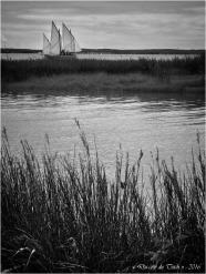 BLOG-P7025013-Canot 13 rivages Audenge N&B