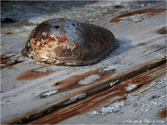 blog-p8175934-vielle-coque-port-du-canal