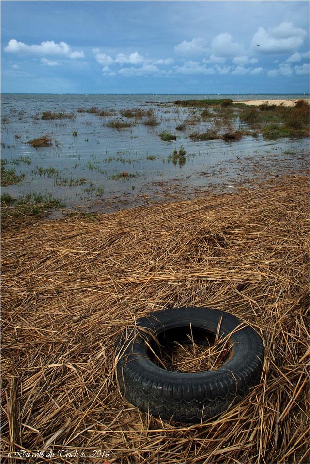 blog-p9146182-2-rivages-entre-canal-et-larros