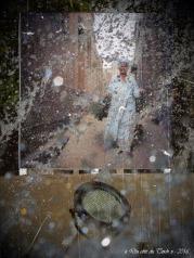 blog-p9296423-la-cite-des-morts-le-caire-florence-lebert-instantane-la-teste-2016-pa07