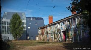 blog-pa036447-friche-et-immeubles-bacalan-pa03