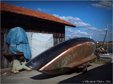 blog-pa096468-coque-port-gujan