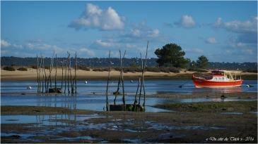 blog-pa186615-conche-du-mimbeau-cap-ferret