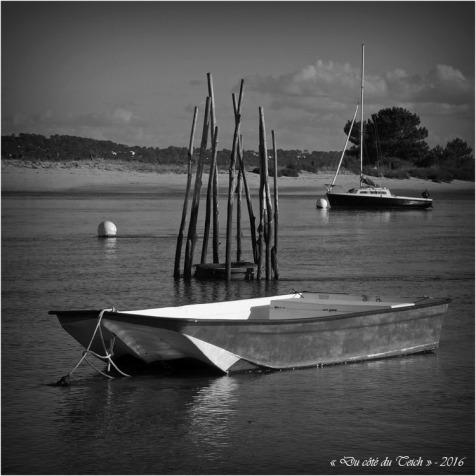 blog-pa186663-conche-mimbeau-cap-ferret-nb