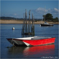 blog-pa186663-conche-mimbeau-cap-ferret