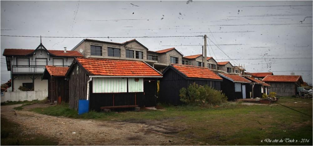 blog-pb167049-50-cabanes-et-constructions-lapin-blanc-pa03-c