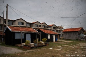 blog-pb167052-cabanes-et-constructions-lapin-blanc-pa03-c