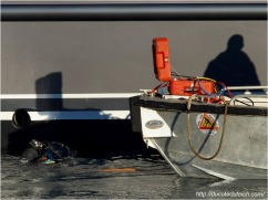blog-pc137480-plongeur-enlevant-cales-yacht-44-metres-couach