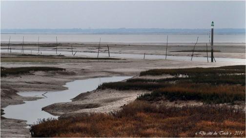blog-p1017562-rivages-barbotiere-1er-janvier-2017