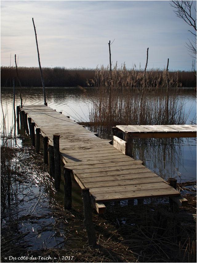 blog-p2257941-ponton-leyre-port-des-tuiles