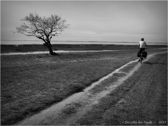 blog-p3268151-sentier-du-littoral-cassy-taussat-nb.jpg