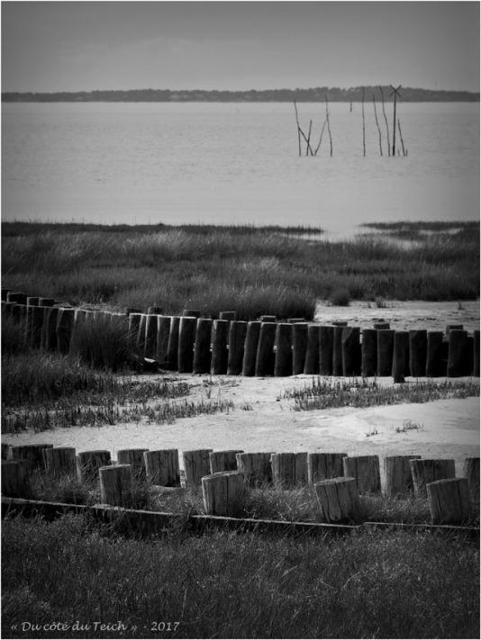 blog-p3268153-rivages-cassy-taussat-nb.jpg