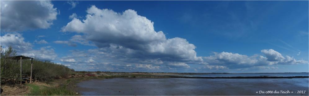BLOG-P3288275-78-rivages Audenge