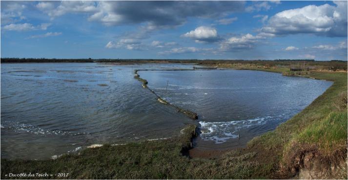 BLOG-P3288314-16-marée montante tonne de chasse chenal de Certes