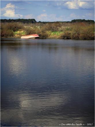 BLOG-P3288330-sentier du littoral Audenge