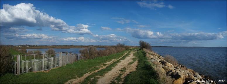 BLOG-P3288334-36-sentier du littoral Audenge 2