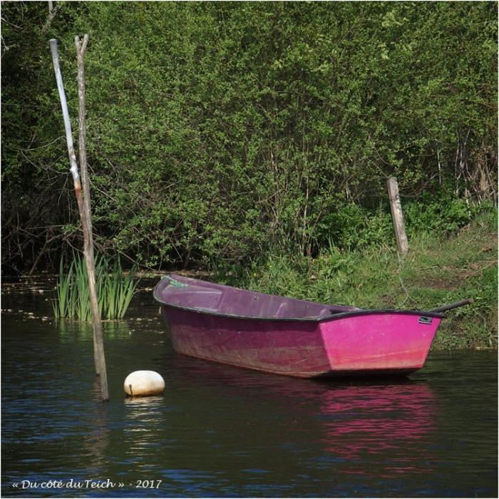 blog-p4118680-barque-petit-port-biganos.jpg